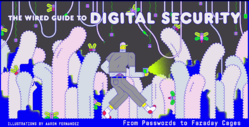Wireds guide to figital security illustration.png