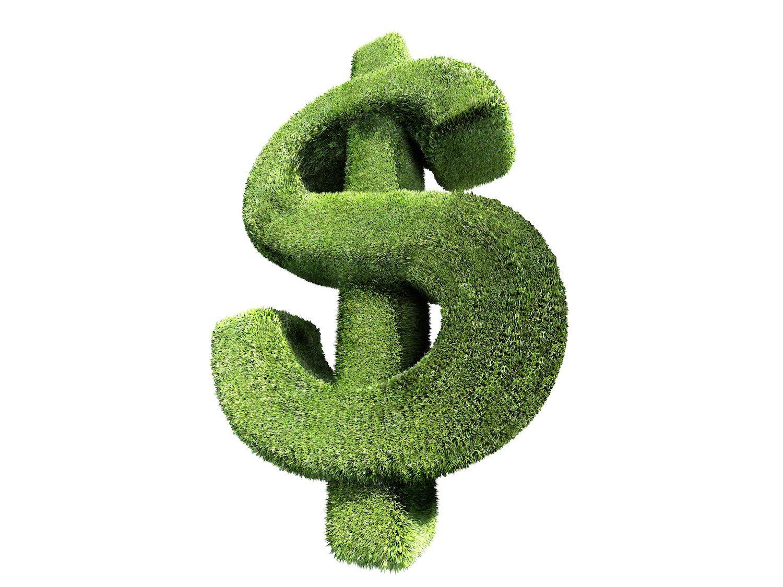 dollar_sign_hedge_copy_rx